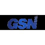 GSN Electronic